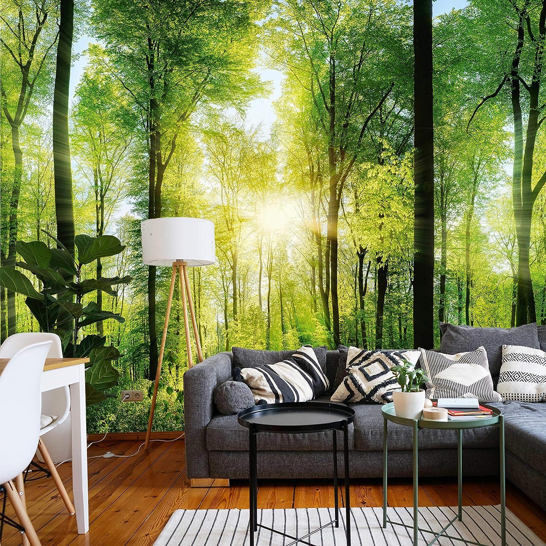 murimage Papel Pintado Puerta Bosque 3D 86 x 200 cm Incluye Pegamento Madera Plantas Abedules /Árboles Sol Habitaci/ón Fotomurales Pared