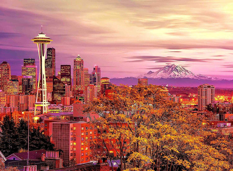 Amazon.com: Adult Jigsaw Puzzle Space Needle Tower Seattle, Washington USA  500-Pieces: Toys & Games