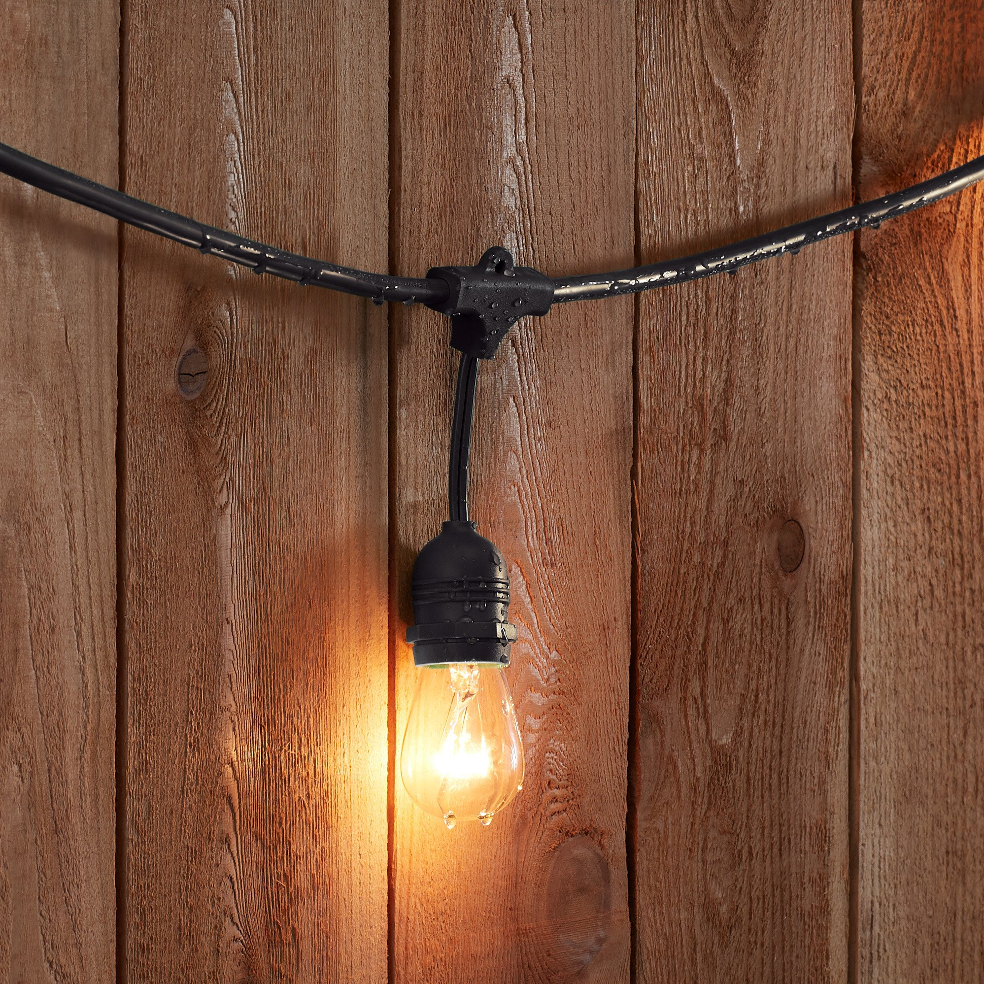 AmazonBasics Weatherproof Outdoor Patio String Lights S14 Bulb, Black, 48-Foot by AmazonBasics (Image #2)