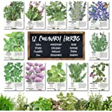 Culinary Herb Seed Collection, 12 Individual Seed Packets Incl. 4,000+ Seeds Collectively (Sage, Basil, Chives, Cilantro, Rosemary, Dill, Marjoram, Oregano & More) Non-GMO Seeds by Seed Needs
