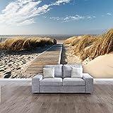 PAPIER PEINT PHOTO ,,Summer Beach 104' 366cm x 254cm océan mer plage dune colle inclu PHOTO MURAL Tableaux muraux déco XXL