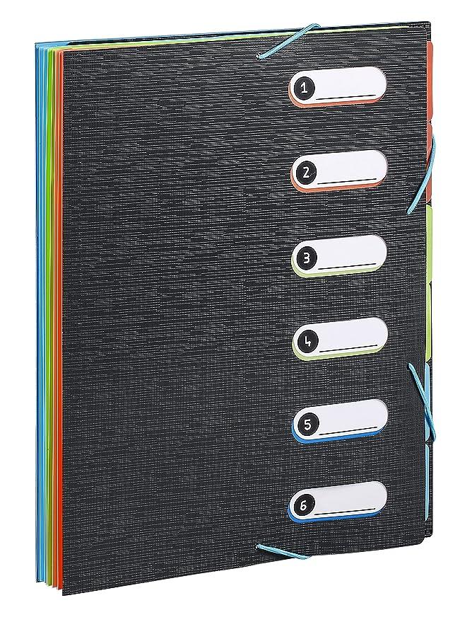 Viquel 497730 - 05 - Carpeta (polipropileno, 6 posiciones bloque papel integrado: Amazon.es: Oficina y papelería