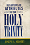 REFLECTIONS ON ATTRIBUTES OF THE HOLY TRINITY (English Edition)