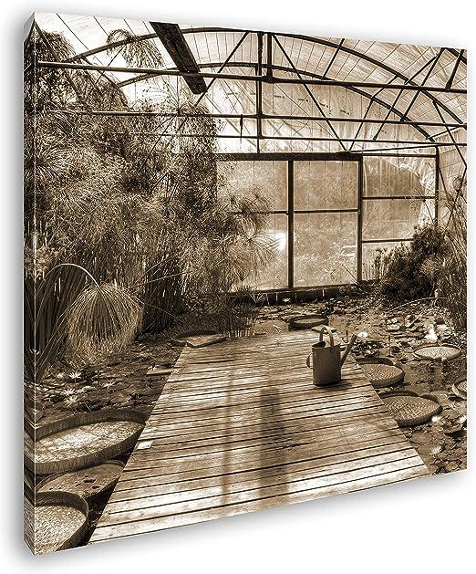 deyoli Efecto Invernadero con Lotus Plantas: Sepia como Lienzo ...