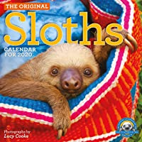 The Original Sloths Wall Calendar 2020