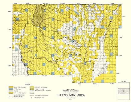 Amazon.com: Topographical Map - Steens Mountain, Central ... on central georgia map, central nj map, central washington map, central virginia map, grants pass map, arizona map, central ohio map, high desert map, central tx map, central ny map, central san diego map, oregon's map, central mountain time zone map, central eastern us map, eagle crest resort map, central iowa map, central michigan map, central u.s. map, central bend map, central oklahoma city map,