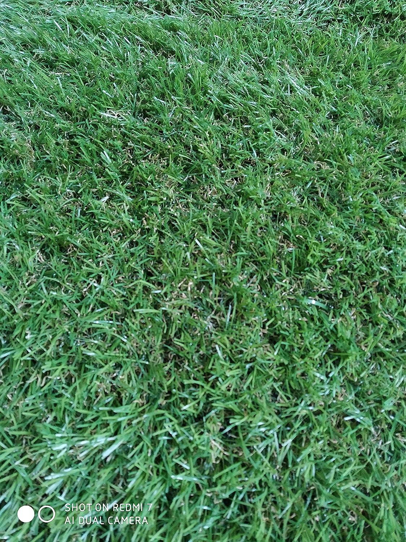 Rollo de césped artificial de 30mm (2x5 Metros): Amazon.es: Jardín