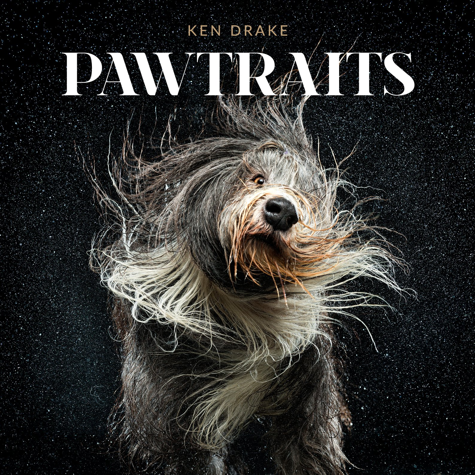 Download Pawtraits pdf epub