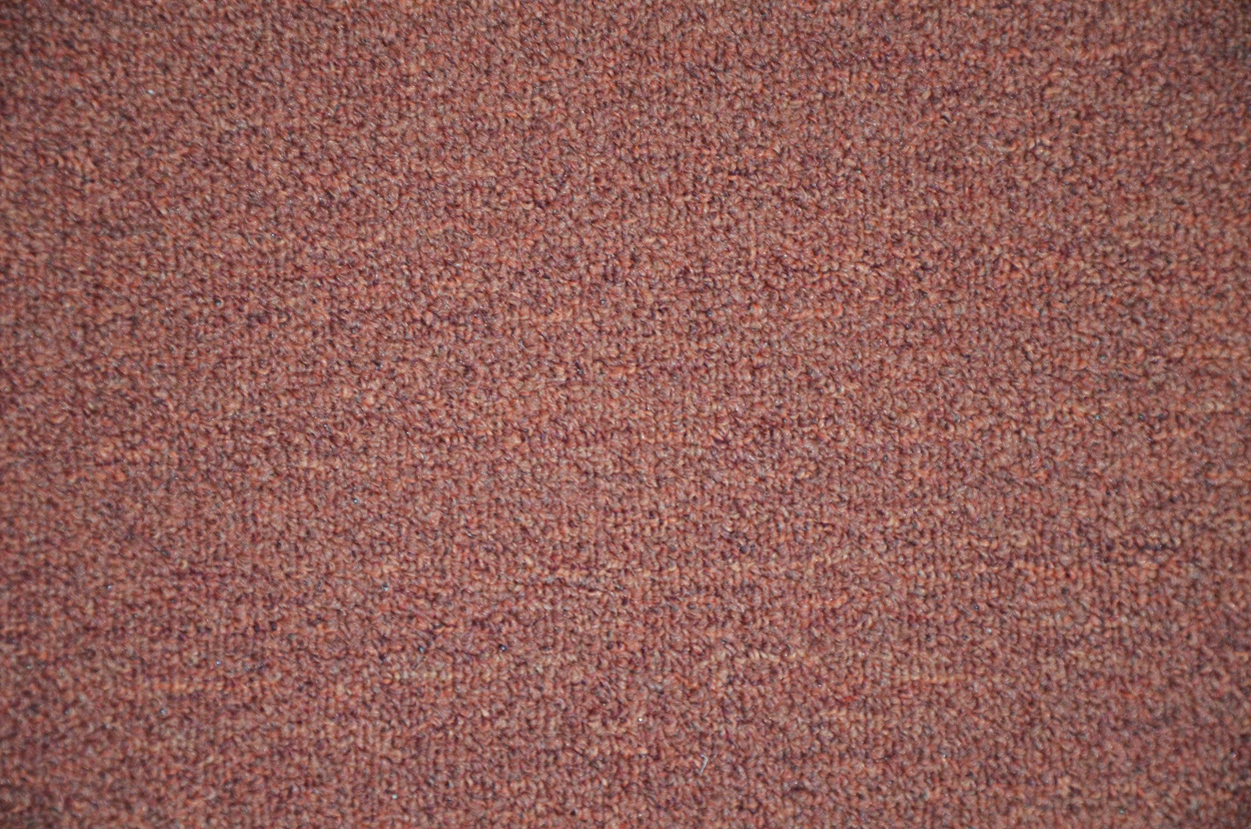 Dean Pet Friendly Non-Skid 2' x 3' Carpet Accent Rug/Anti-Fatigue Mat: Copper