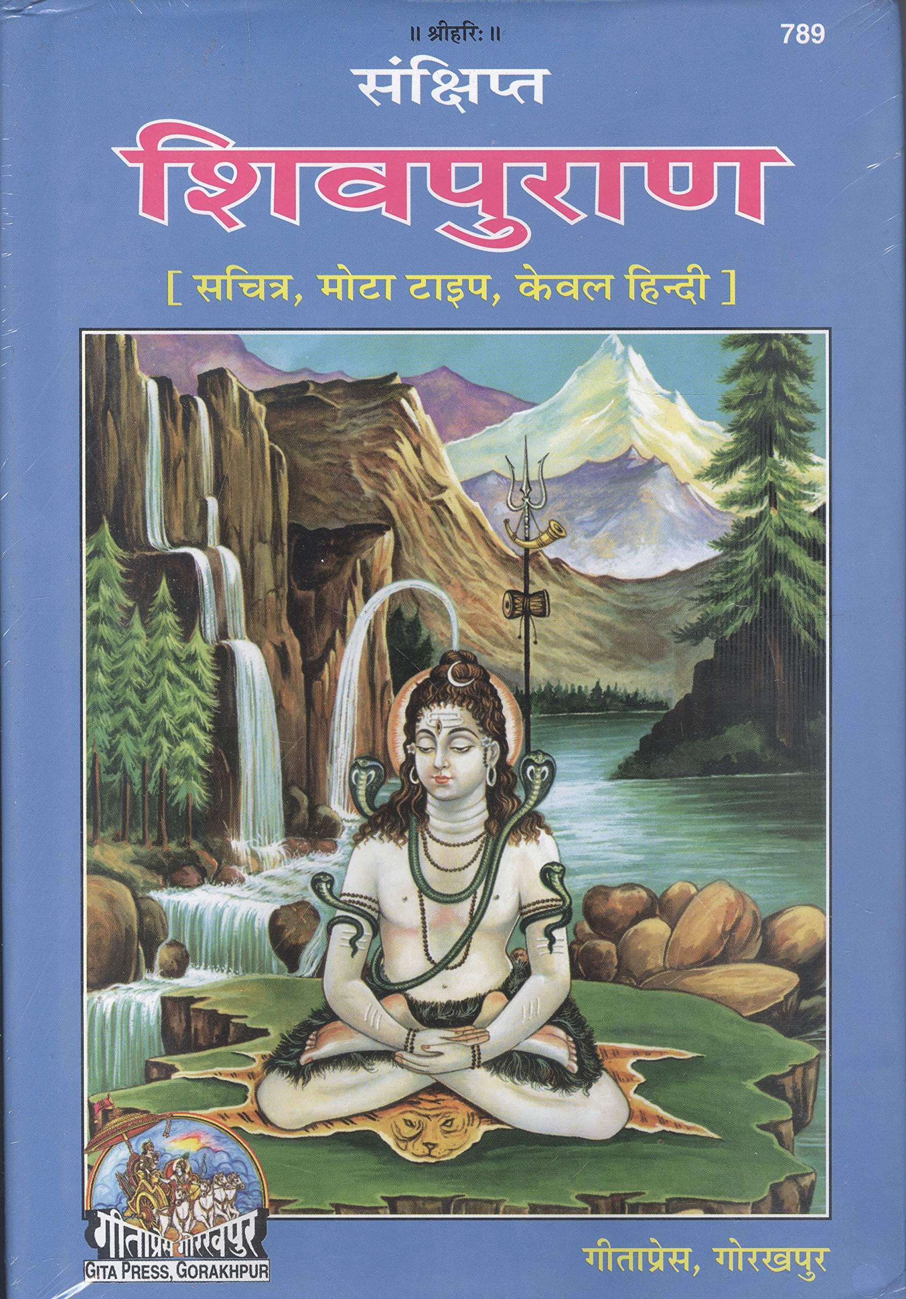 Amazon buy shri vishnu puran code 48 book online at low prices sankshipt shiv puran with pictures bold type only hindi fandeluxe Gallery