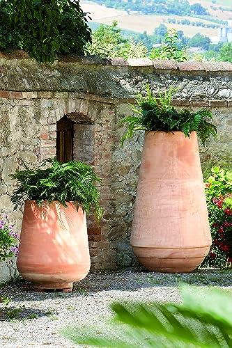 Anfore Con Fiori.Super Anfora In Terracotta Per Piante E Fiori Altezza Cm