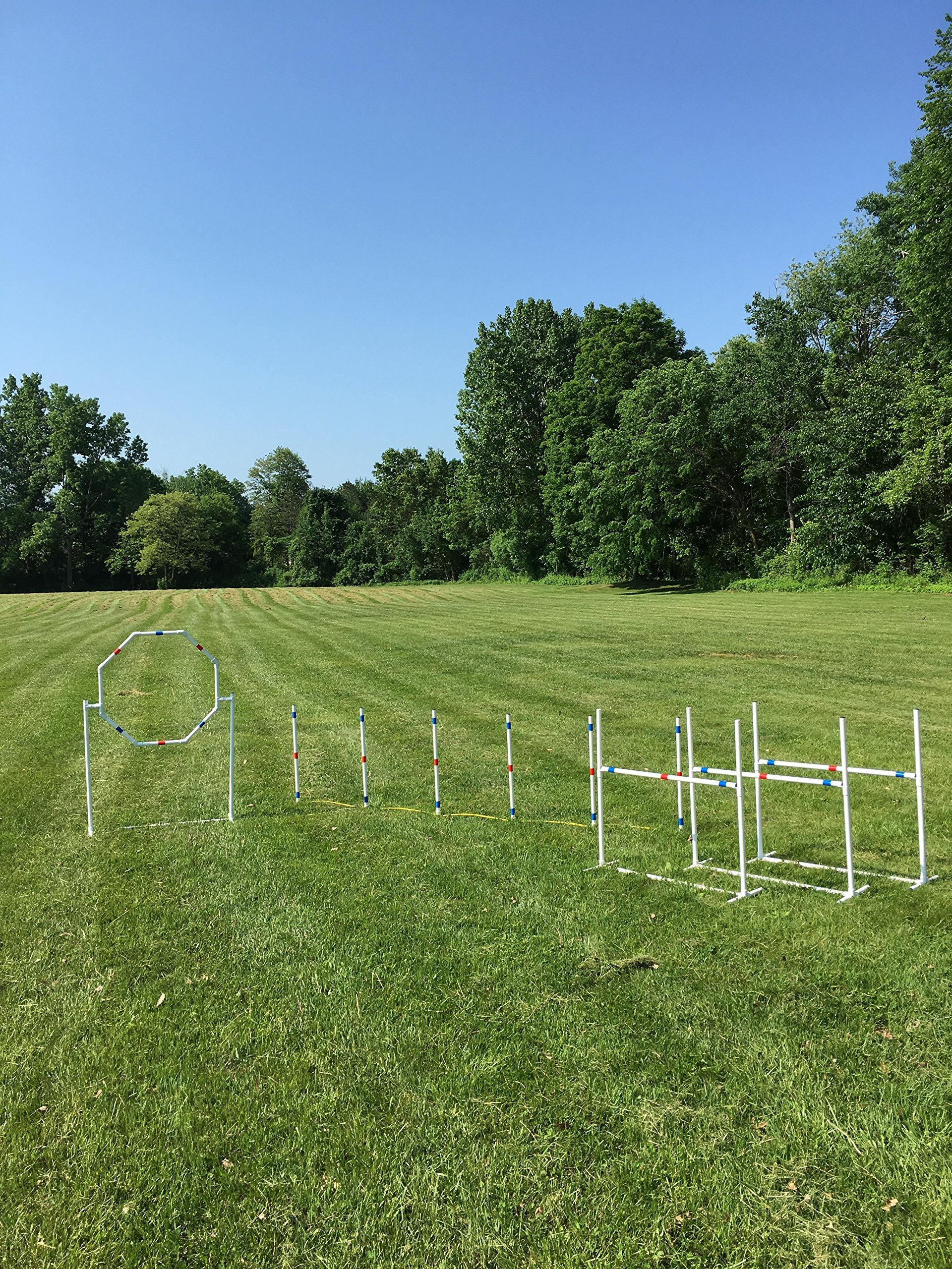 Dog Agility Equipment Deluxe Beginner Set   3 Bar Jumps   6 Weave Poles   1 Octagon Hoop Jump by The Dog Agility Shop