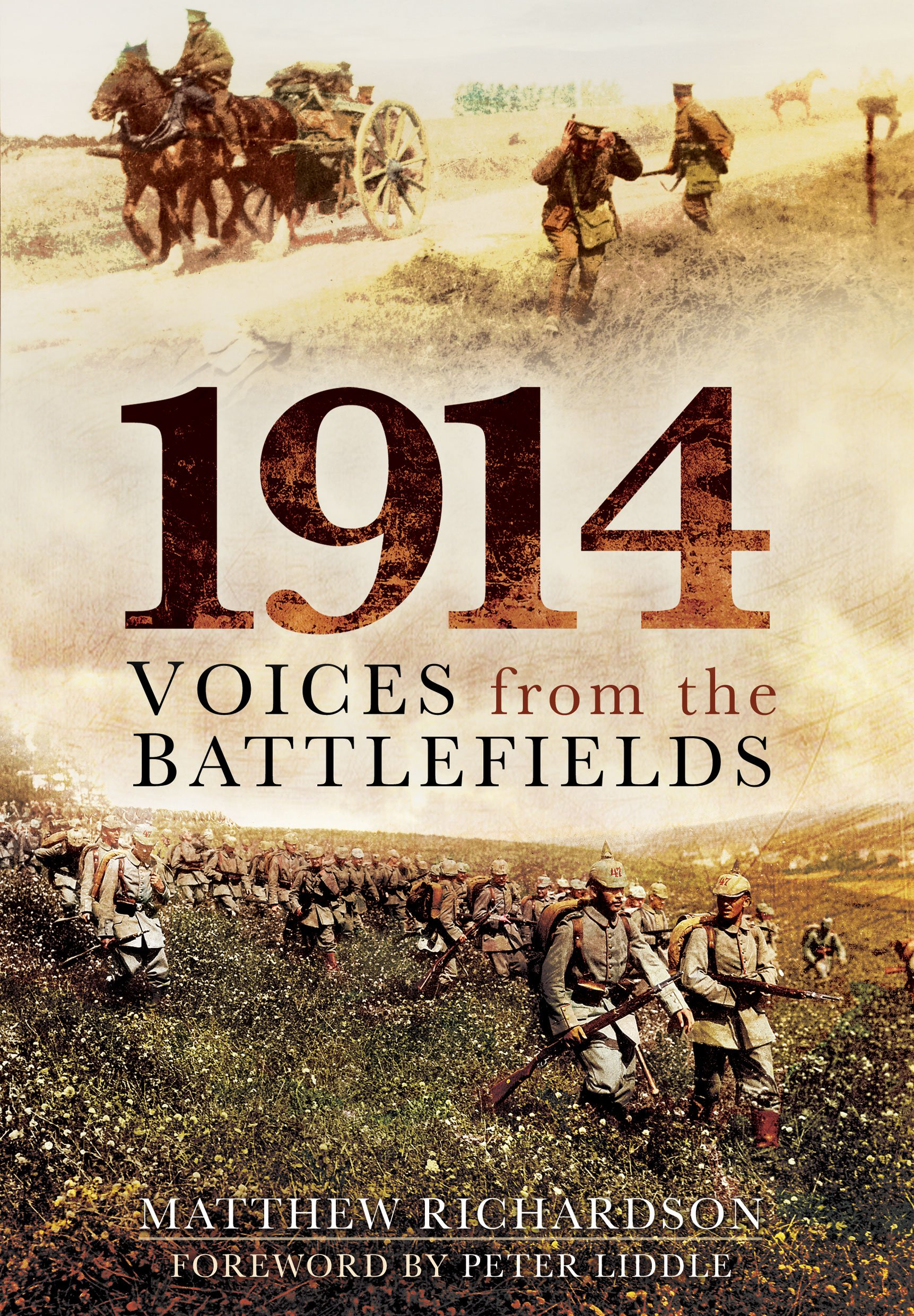 1914: Voices from the Battlefields PDF