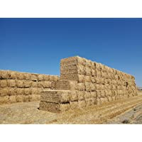 Premium 100% Natural Wheat Straw Grass Harvested 2020, Farmer Direct- Excellent Animal Bedding, Garden Cover, Mulch and Farm Wheat Straw 4lbs. Straw Shipped
