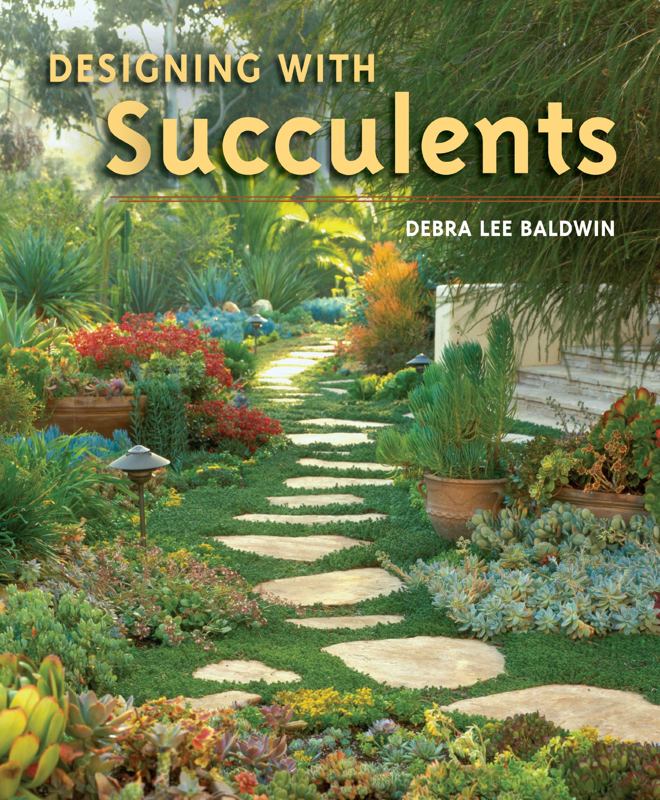 Designing with Succulents Debra Lee Baldwin 9780881928167