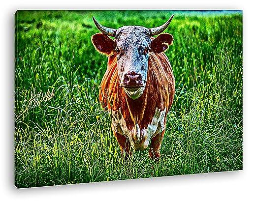 Vaca de Toro en el Sauce Efecto: Zeichnung como Lienzo ...