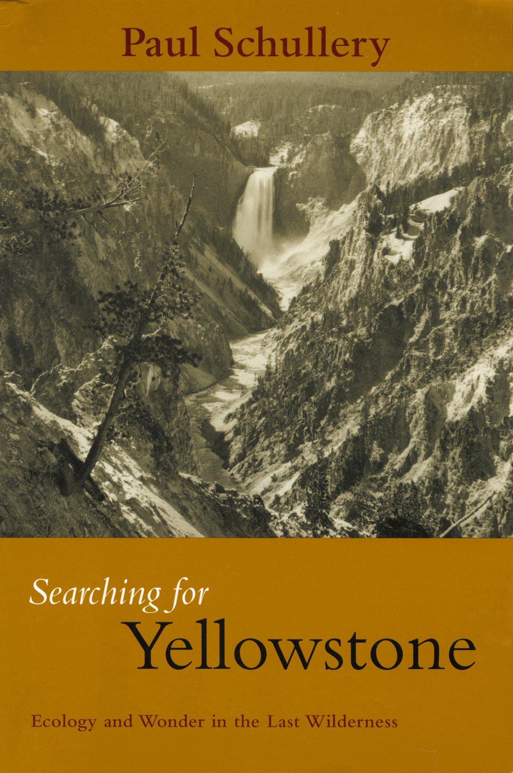 Searching for Yellowstone: Ecology and Wonder in the Last Wilderness PDF
