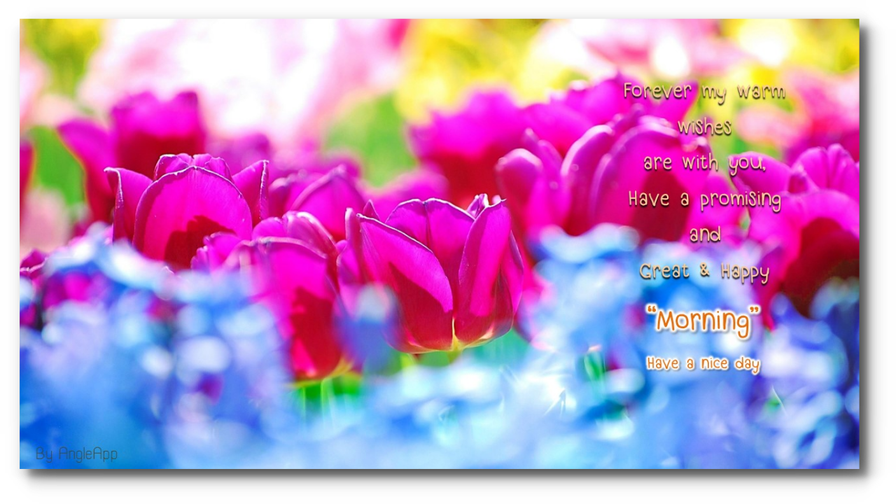 Amazon Good Morning Night Beautiful Flower Appstore For Android