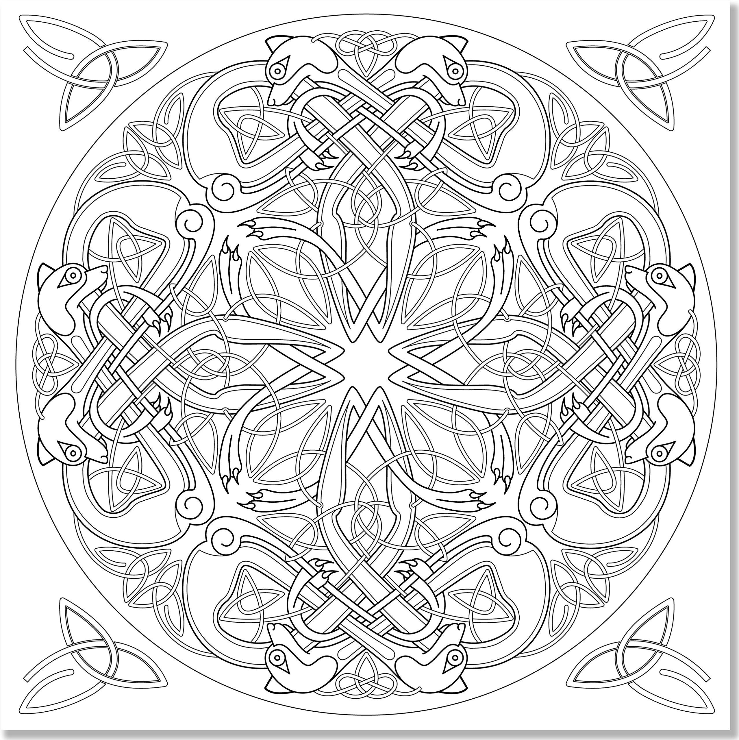 amazoncom celtic designs adult coloring book 31 stress relieving designs studio 9781441317438 peter pauper press books - Celtic Coloring Pages