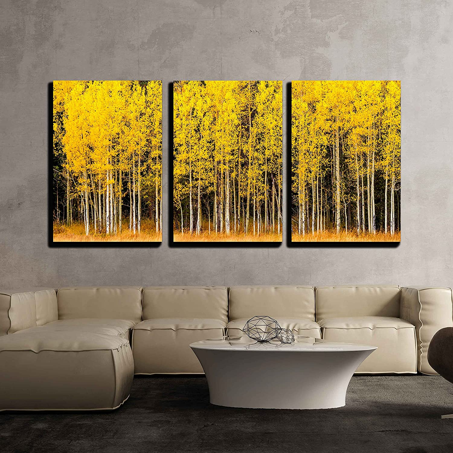 "wall26 3 Piece Canvas Wall Art - Stand of Changing Yellow Aspen Tree in Front of Dark Green Pine Trees - Modern Home Art Stretched and Framed Ready to Hang - 24""x36""x3 Panels"