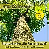 """Phantasiereise """"Ein Baum im Wald"""": Finde deine Wurzeln in tiefer Ruhe und Gelassenheit"""