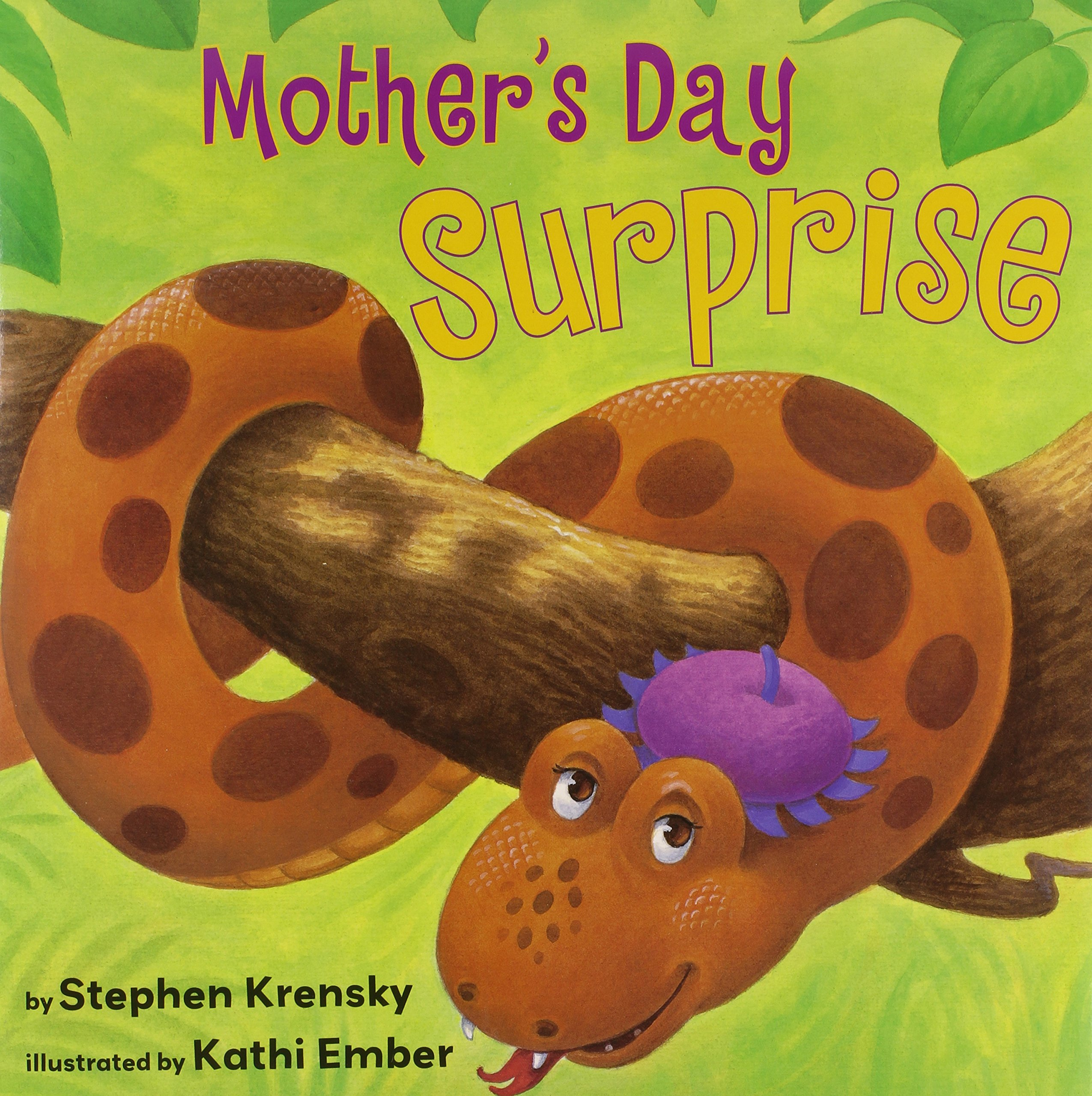 Mother's Day Surprise ebook