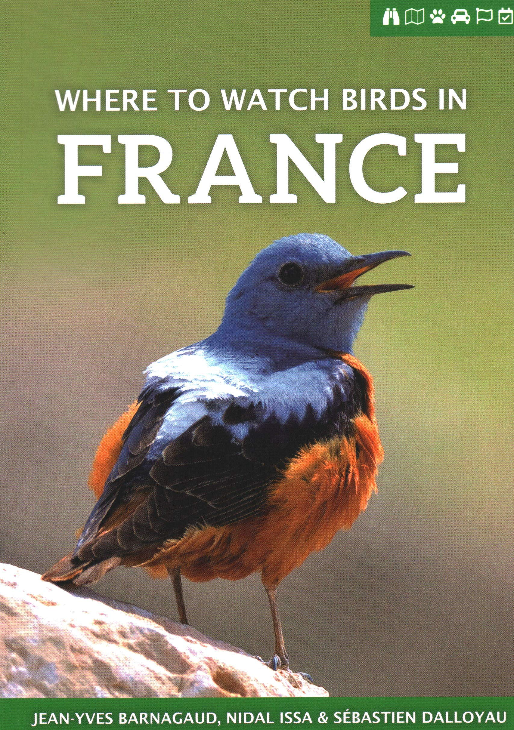 Where To Watch Birds In France  Where To Watch Guides