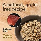 Taste of the Wild Grain Free High Protein Wet
