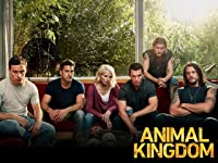 Animal Kingdom by Warner Bros.