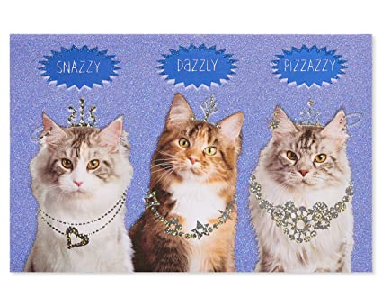 American Greetings Funny Cats Birthday Card With Glitter