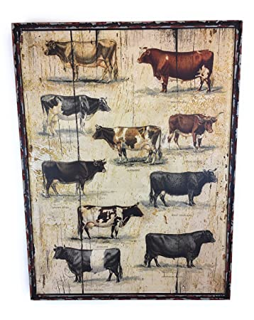 Amazon.com: Framed Vintage Cow Breeds: Posters & Prints