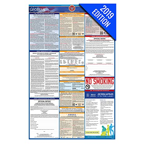 2019 Georgia Labor Law Poster – State, Federal, OSHA Compliant – Single  Laminated Poster