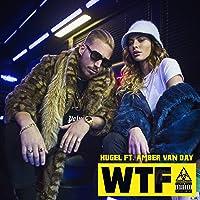 WTF (feat. Amber Van Day) [Explicit]