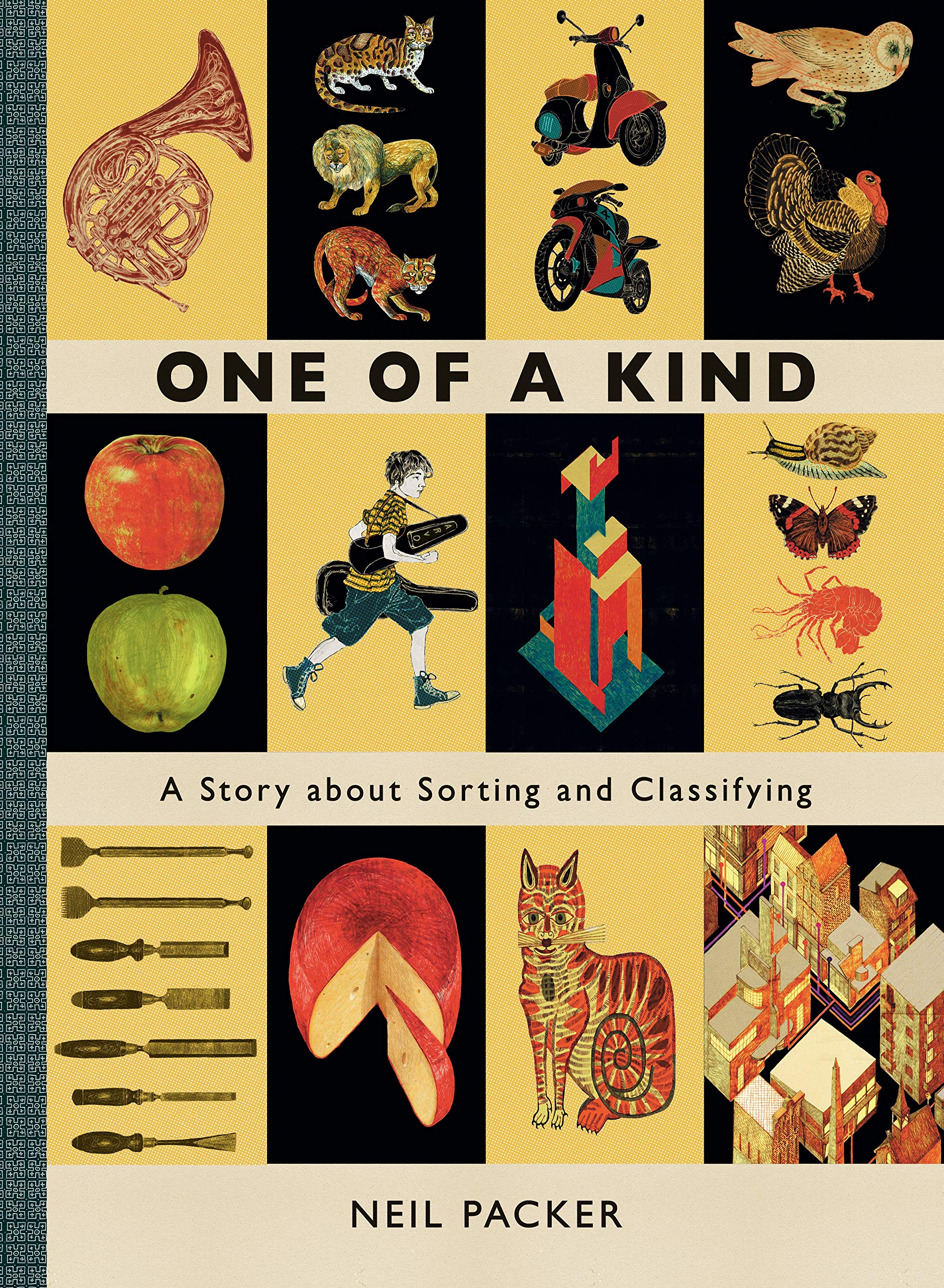One of a Kind: A Story About Sorting and Classifying: Packer, Neil, Packer,  Neil: 9781536211214: Amazon.com: Books