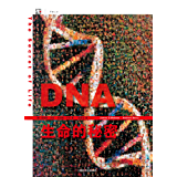 "DNA:生命的秘密(中国""国家图书馆文津图书奖""获奖著作;诺贝尔奖得主""DNA之父""詹姆斯·沃森集五十年研究思考之大成) (世纪人文系列丛书.开放人文)"