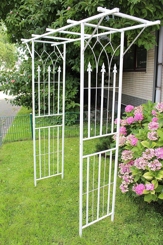 Rose arco rankier ayuda Rose estructura Rank estructura Jardín – Arco Blanco: Amazon.es: Jardín