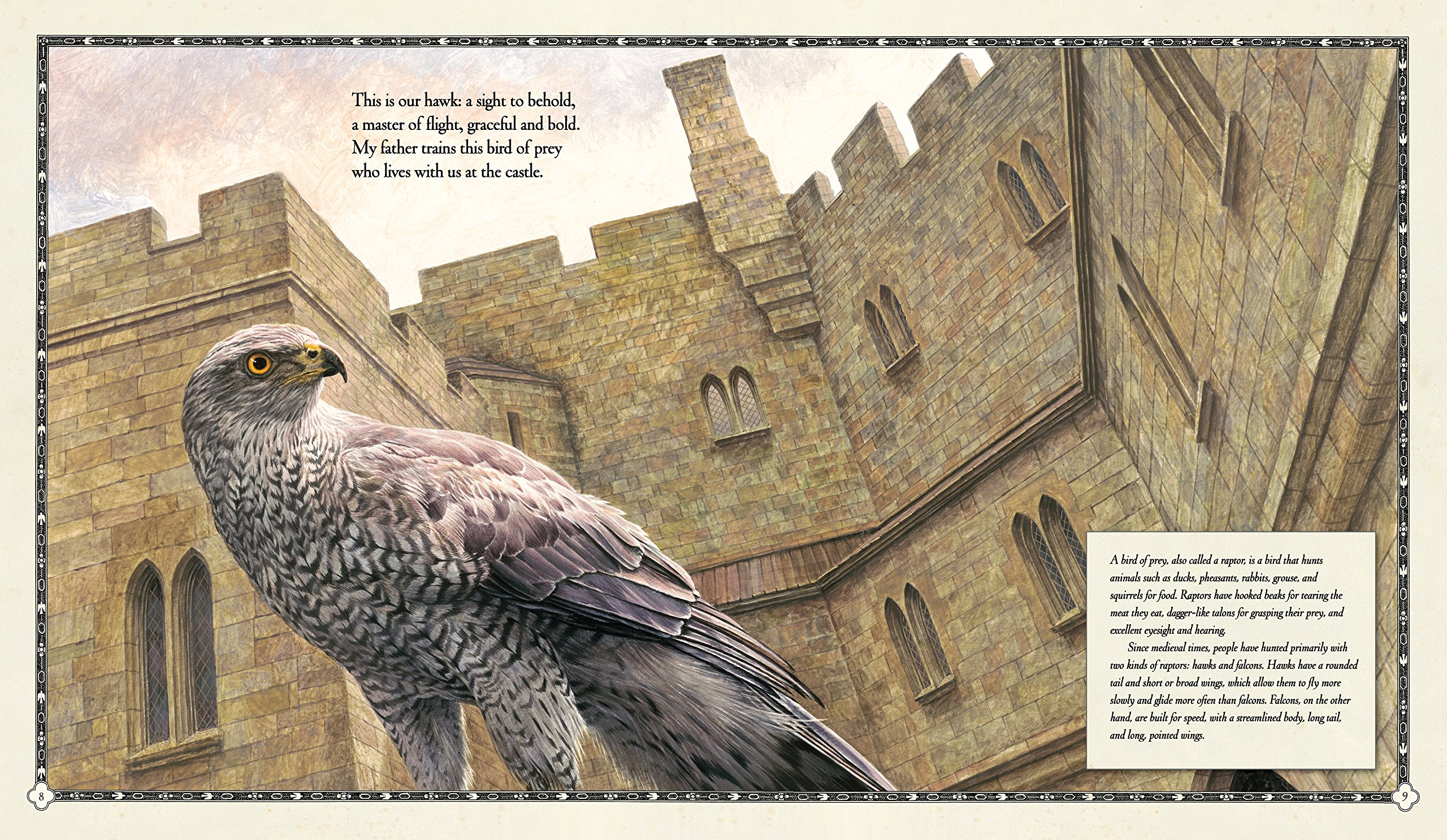 The Hawk of the Castle: A Story of Medieval Falconry by CANDLEWICK (Image #2)