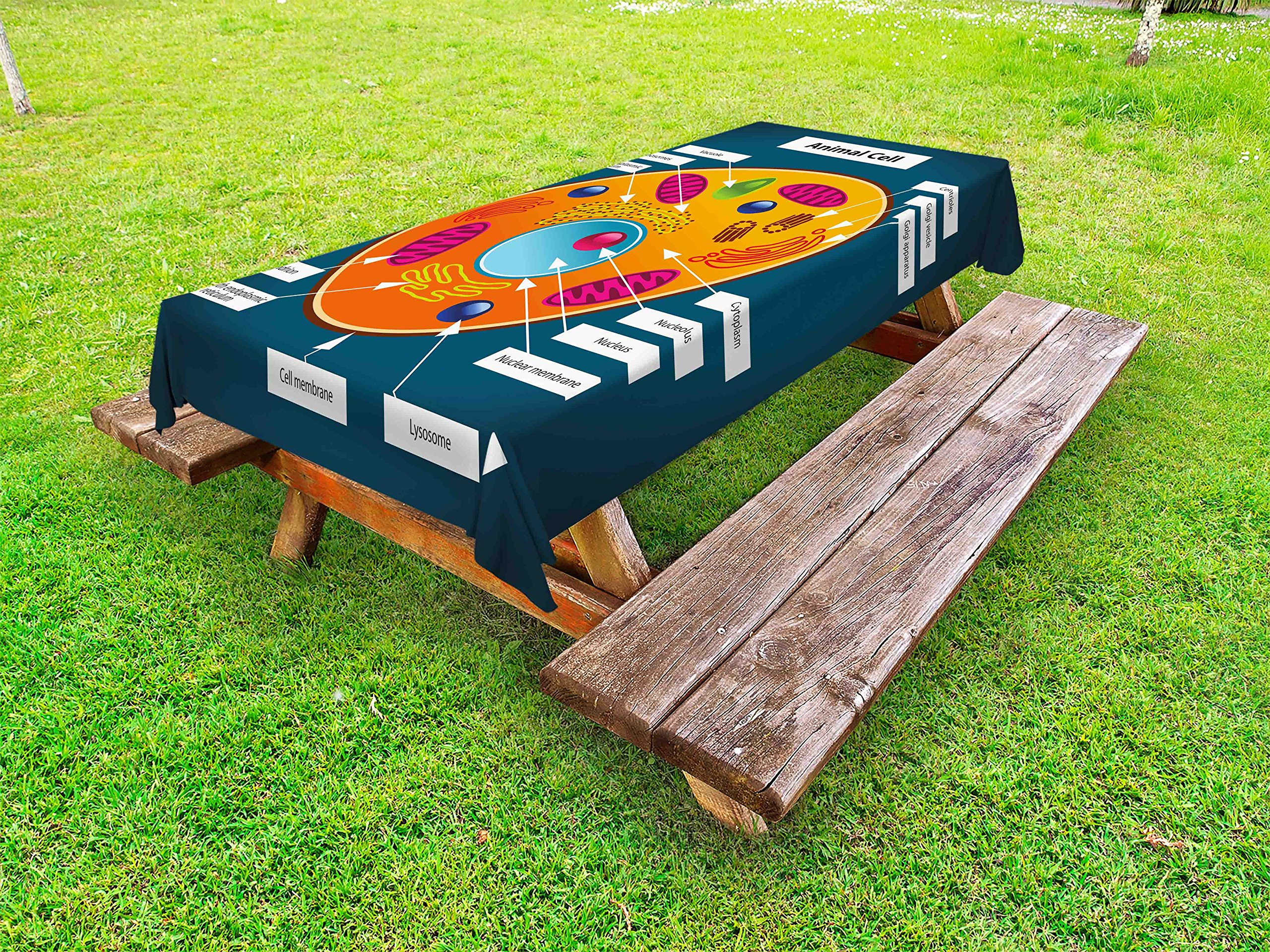 Ambesonne Educational Outdoor Tablecloth, Science at School Cell of an Animal Colorful Display Medical Studies Nucleus, Decorative Washable Picnic Table Cloth, 58 X 120 inches, Multicolor