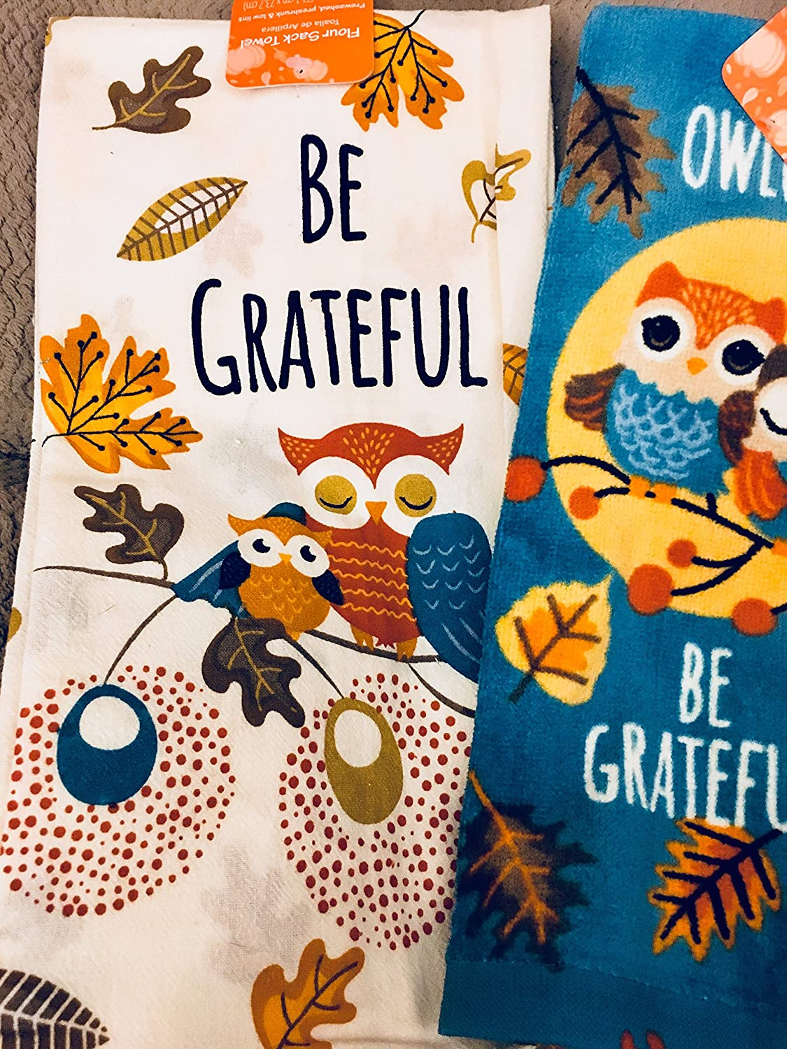 Amazon.com: Critter Owl Towel Set Be Greatful Owls 2 Kitchen Dish Towels: Home & Kitchen