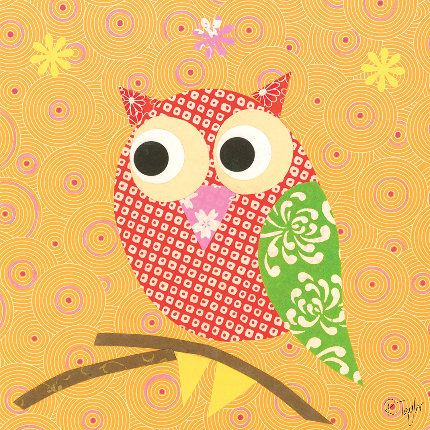 Amazon.com: Oopsy Daisy Mod Owl on Orange Stretched Canvas Wall Art ...