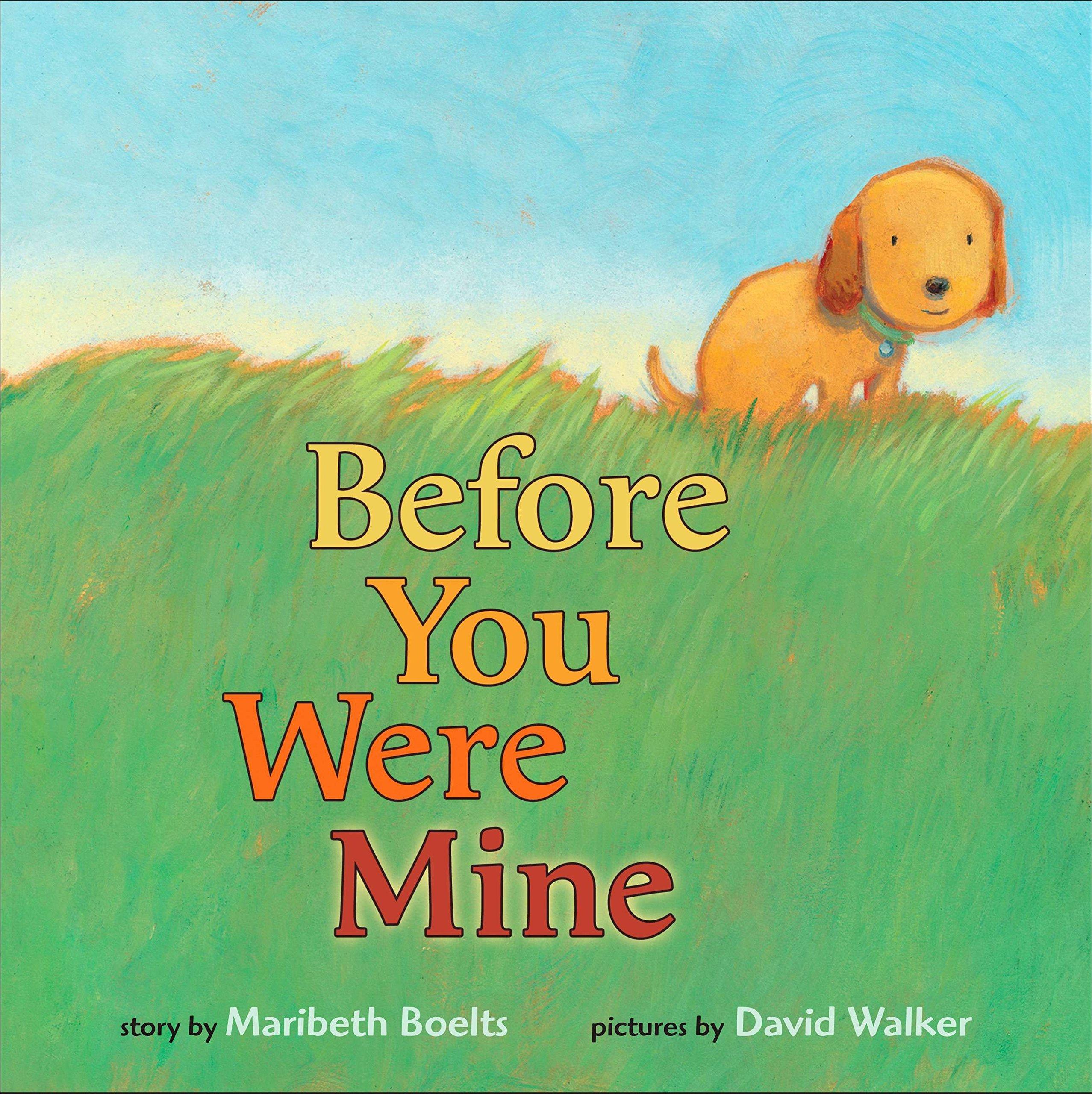 Before You Were Mine: Boelts, Maribeth, Walker, David M.: 9780399245268: Amazon.com: Books