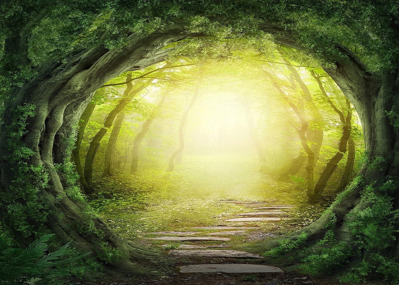 Forest fondo encantado secreto profundo bosque Cenicienta antiguo árbol casa cuento de hadas boda escena linterna maderas impresión tela fondo fotografía: Amazon.es: Juguetes y juegos
