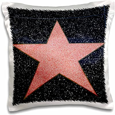 3D Rose Los Angeles Blank Star On Hollywood Walk Of Fame Pillow Case 16