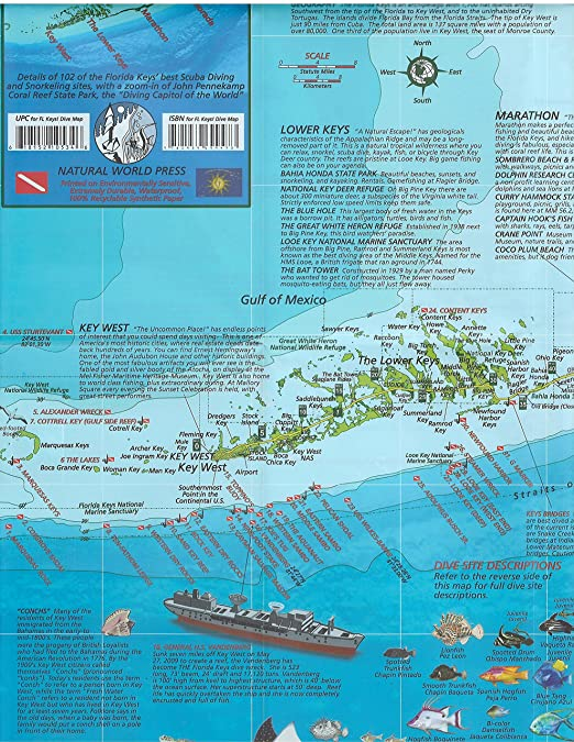 Full Map Of Florida.Amazon Com Florida Keys Dive Map Waterproof Map By Frank Nielsen