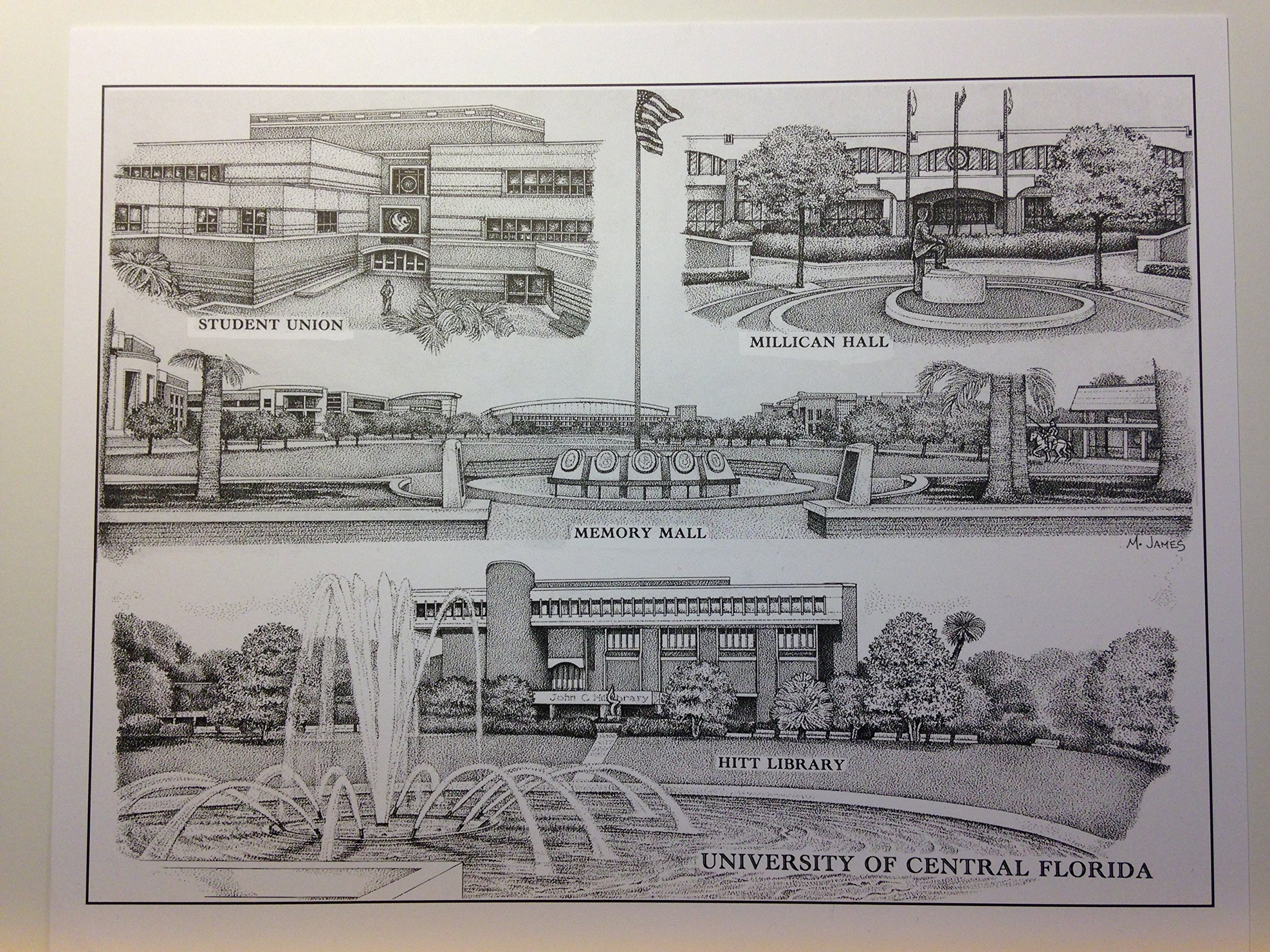 University of Central Florida 8''x10'' pen and ink collage print
