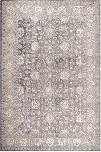 Safavieh Sofia Collection SOF330B Vintage Light Grey and Beige Distressed Area Rug 3 x 5