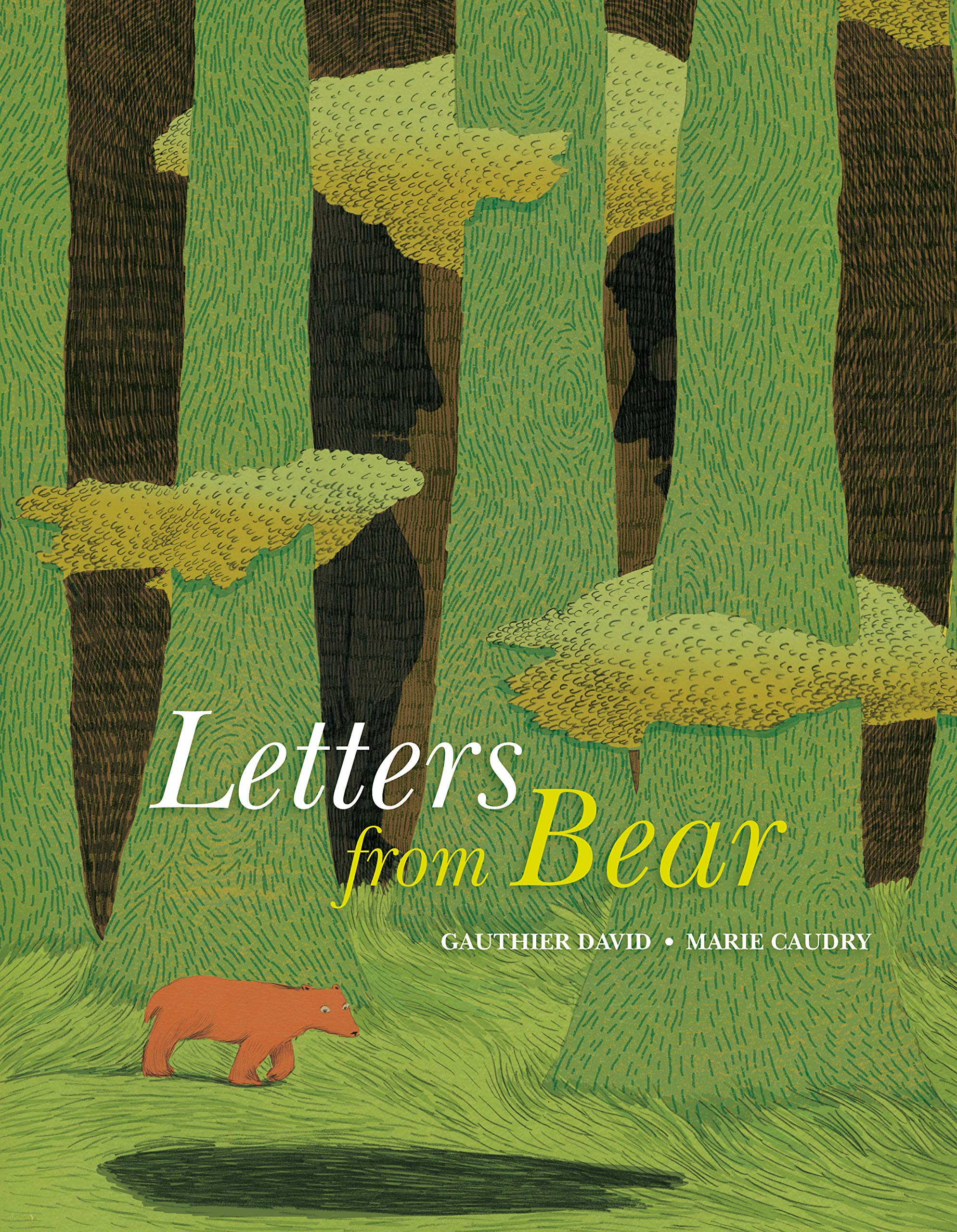 Letters from Bear: David, Gauthier, Caudry, Marie: 9780802855367 ...