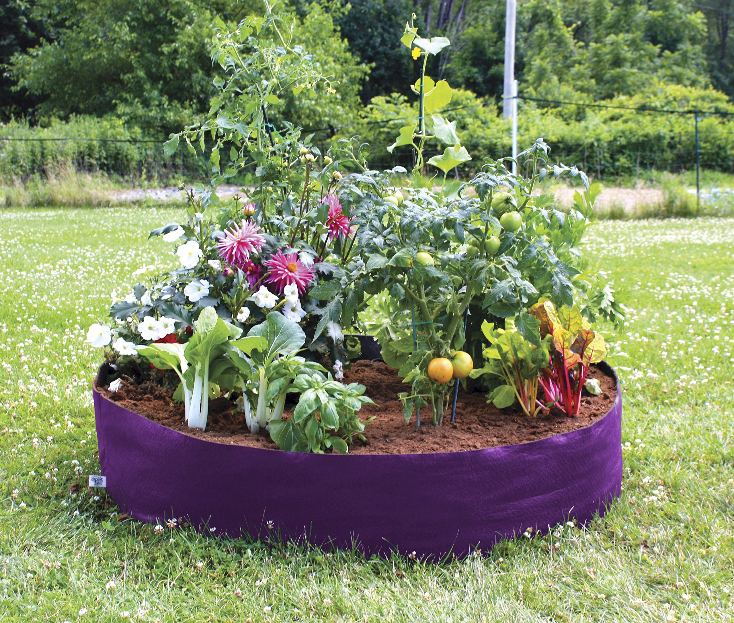 Smart Pots Big Bag Fabric Raised Planting Bed, Junior, Purple