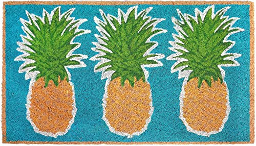 Liora Manne NTR12203504 Natura Coastal Beach Pineapples Aqua Outdoor Welcome Coir Door Mat, 1 6 x 2 6