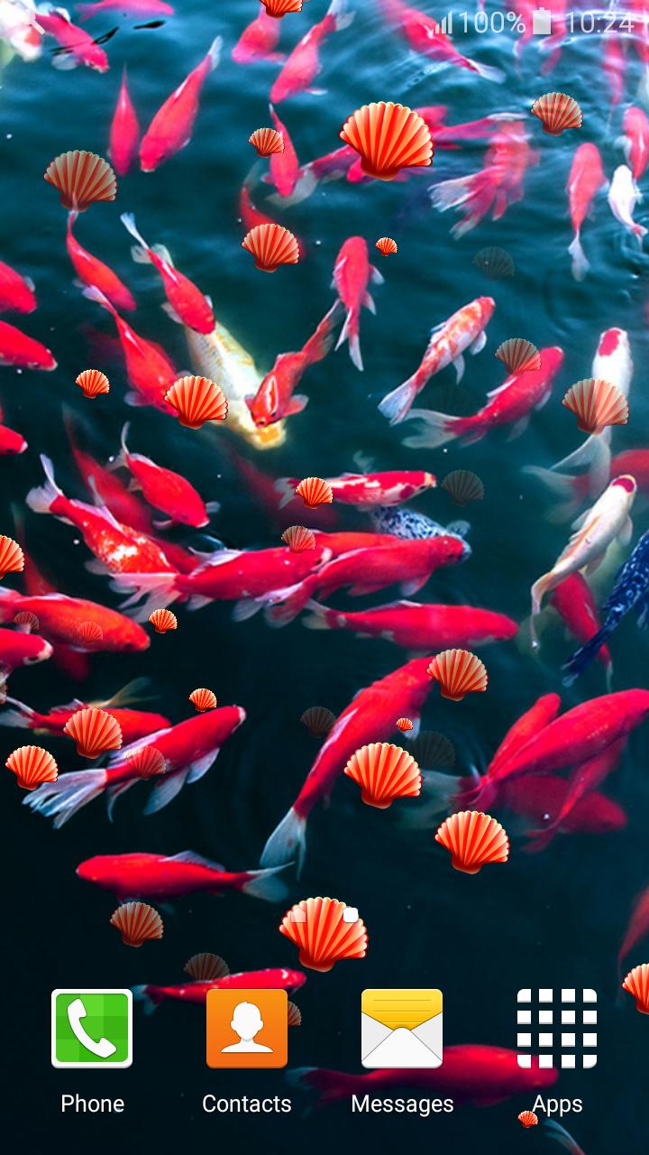 Fondos de Pantalla de Koi Fish Live: Amazon.es: Appstore para Android